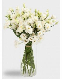 Bouquet of eustoma (15 pieces)