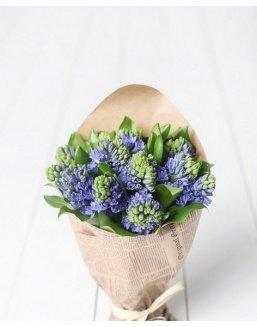 Bouquet of 25 hyacinths | Flowers for Holiday
