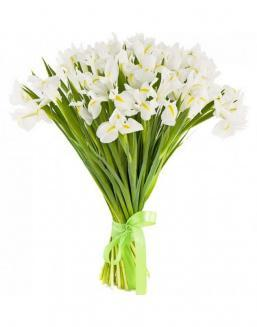 Bouquet of 25 white irises | Flowers for Holiday