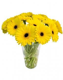 Bouquet of 101 yellow gerberas | Flowers for Holiday