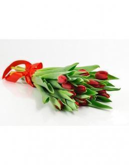 Bouquet of 15 red tulips | Tulips