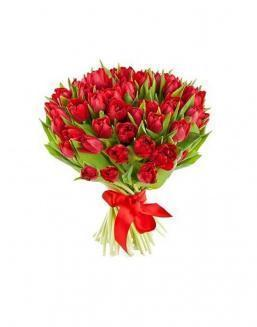 Bouquet of 51 red tulips | Tulips