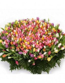 Mix bouquet 501 tulips | Flowers for Holiday