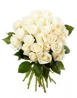 Bouquet of 33 white roses | Flowers for Holiday