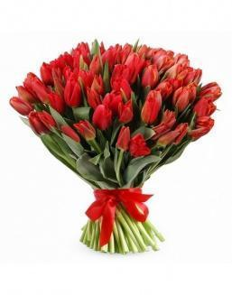 Bouquet 201 red tulips | Flowers for Holiday