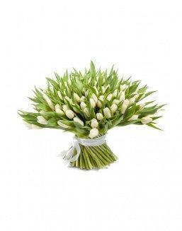 Bouquet 201 white tulips | Flowers for Holiday