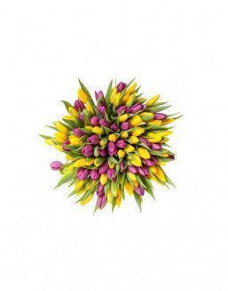Mix bouquet 201 yellow and violet tulips | Flowers for Holiday