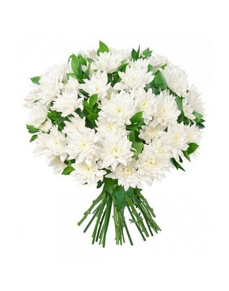 Bouquet of 15 chrysanthemums